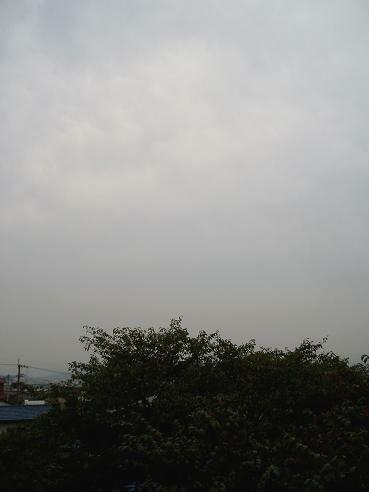どんょり曇り空