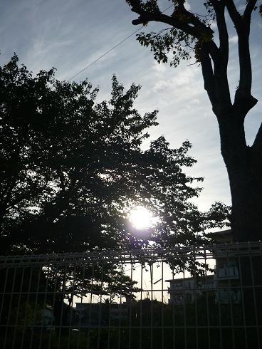 風景 ( 2009 may )