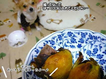 ・・・ハヤクチョダーィ(U* ∂ω∂)ノノ