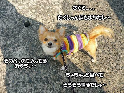 ・・・U(* ´∂ω∂` *)U