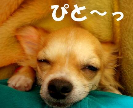 (*∂w∂)-ω- *U)ピトッ