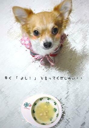 はゃく~~~U(* ̄ω ̄*)U