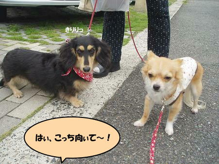 with ななchan ③