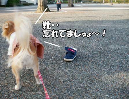 靴脱げたの気じゅぃてなぃち・・(´・ω・ ;AU)
