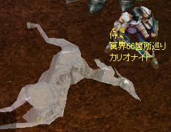 ケントソロ狩り