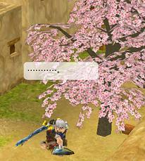 桜の季節(イダー)