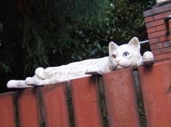 0910obje_cats3s.jpg