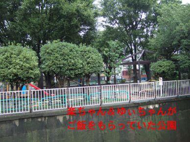 s9_06park1.jpg