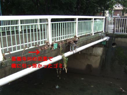 s9_06zenpukuji~river_bridge.jpg