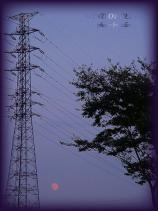DSCF0614 2007.08.27