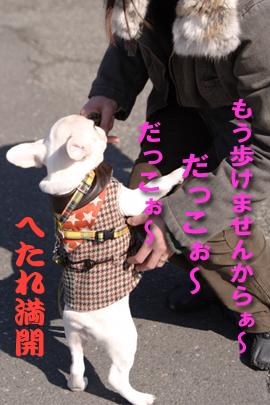 20060304_02.jpg