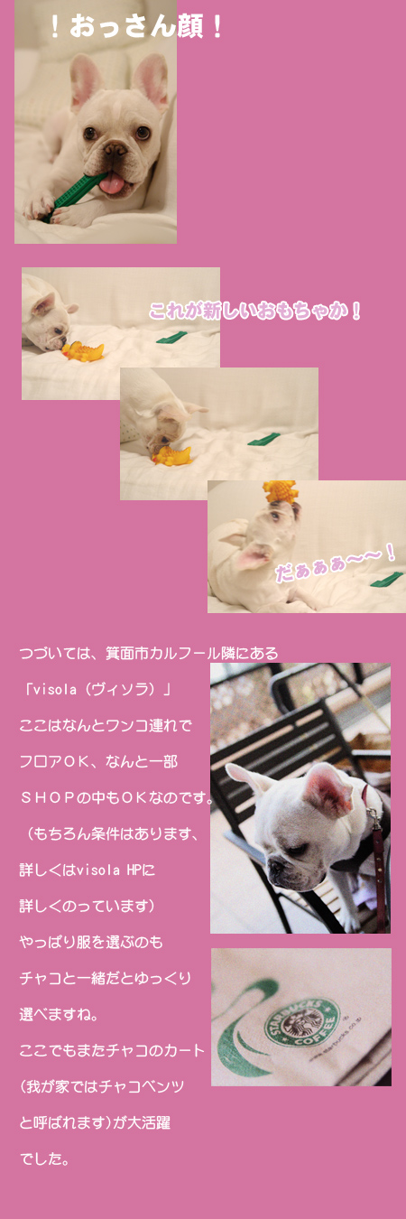 20060717_02.jpg