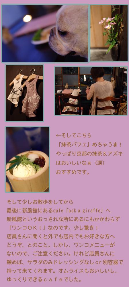 20060727_03.jpg