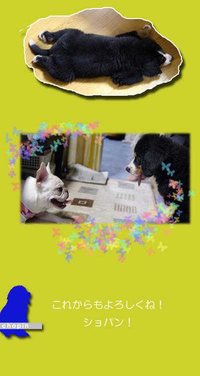 20060813_03.jpg