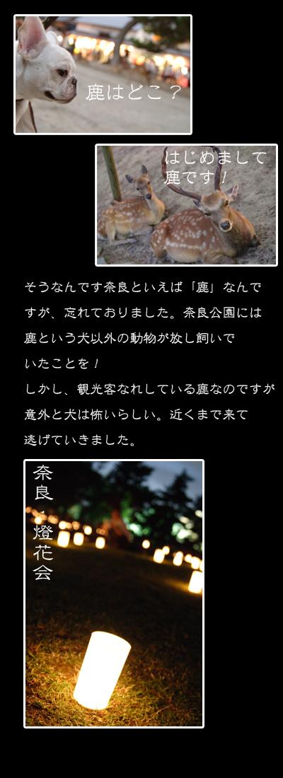 20060816_02.jpg