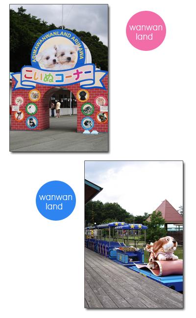 20060817_04.jpg