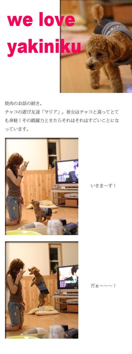 20060924_01.jpg