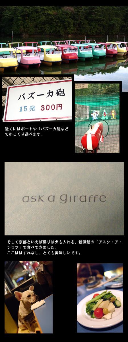 20061015_03.jpg