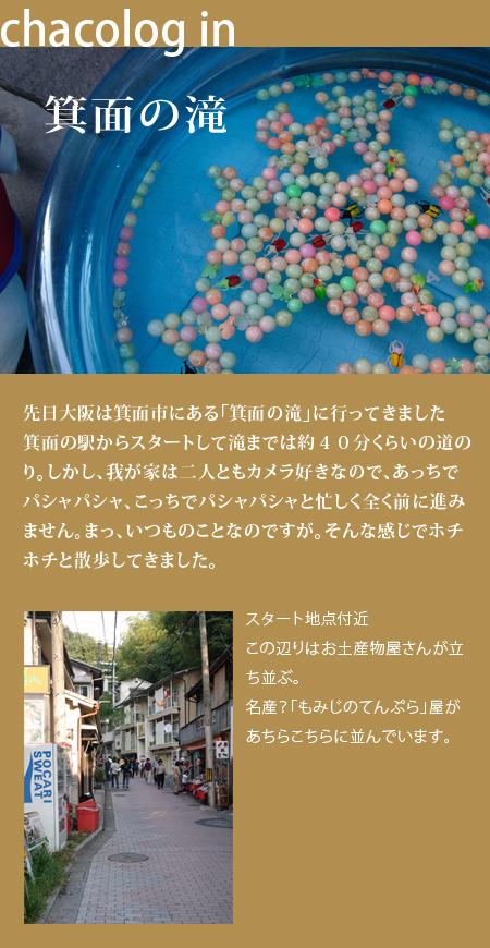 20061108_01.jpg