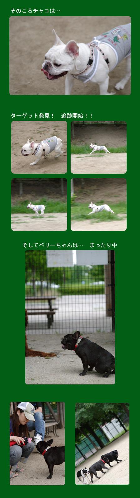 20070701_02.jpg
