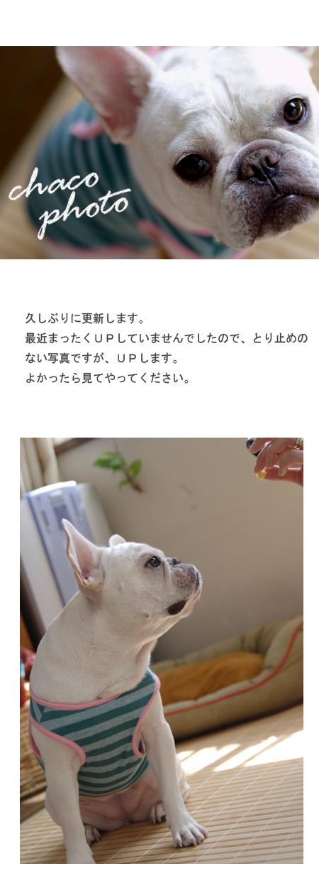 20070812_01.jpg
