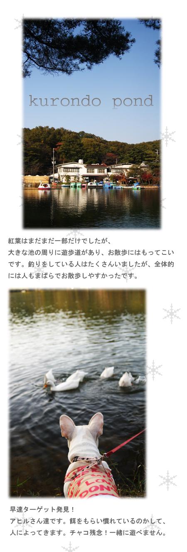 20071117_02.jpg