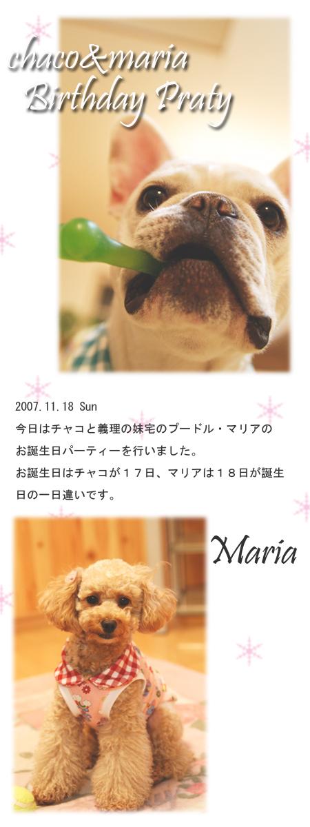 20071118_01.jpg