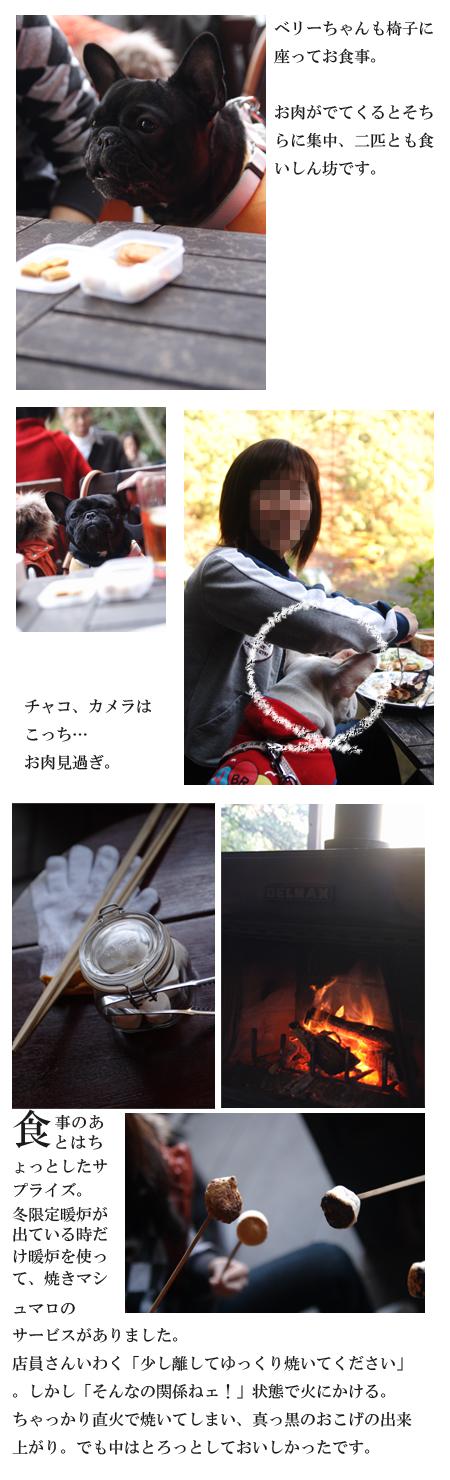 20071125_03.jpg