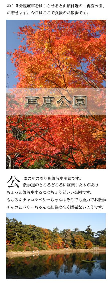 20071125_05.jpg