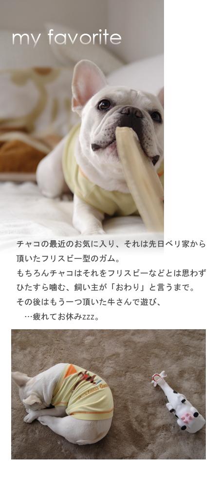 20071126_01.jpg