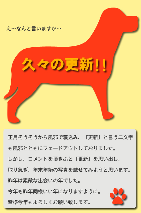 20071223_01.jpg