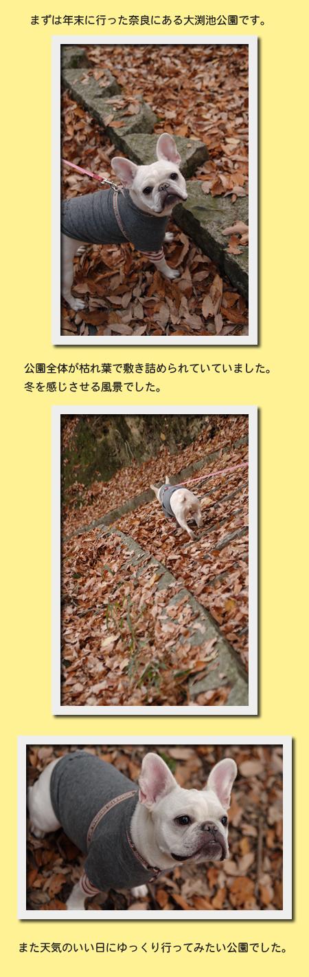 20071223_02.jpg