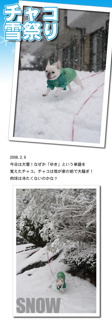 20080209_01.jpg