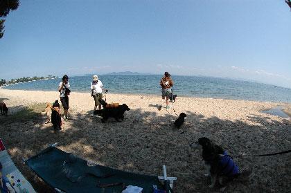 ちゅーずでいず琵琶湖