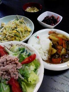 ナス野菜カレー・セロリと水菜とレタスのツナサラダ・セロリともやしの卵炒め・ひじき・長ネギの卵とじ汁