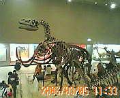 20060305113343.jpg