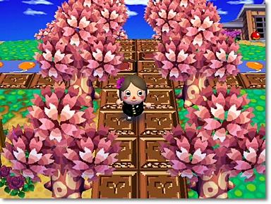 役場前の桜並木♪