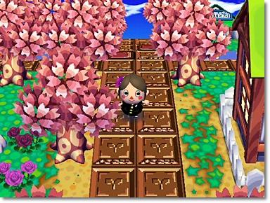 ちぇり*ん家の横の桜並木♪