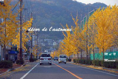 automne02.jpg