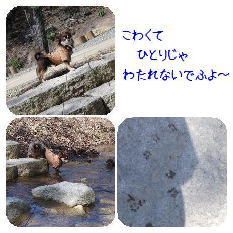 小川の飛び石