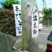 20070701235617.jpg