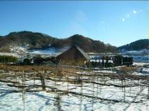 08-2-5 雪景色6