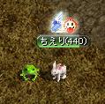 蛙とウサギ
