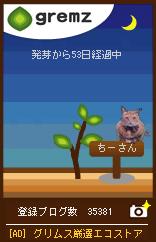 1241790477_08992.jpg