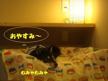 おやすみ りん