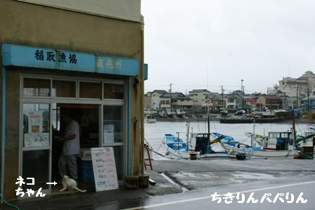 稲取漁港直売所
