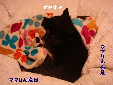 寝るちき2