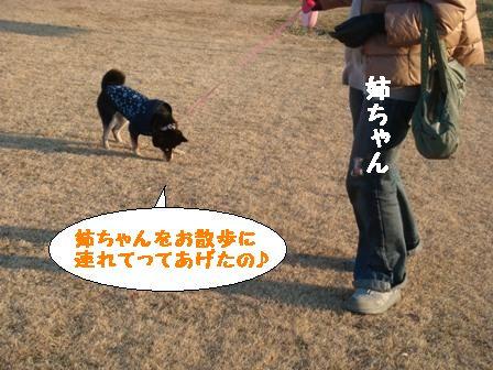 姉とお散歩