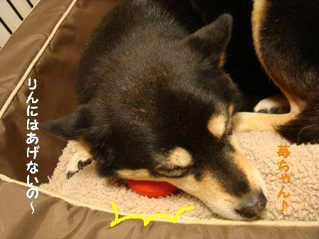 苺ちゃん枕ちき