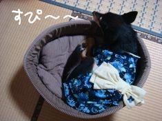 ちき浴衣2
